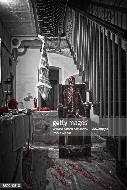 Torturer's Lair