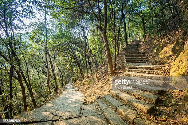 Torturous Steps (Hangzhou Mountains above Linying Monastery)