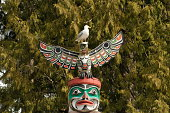 Indigenous Culture Totem Pole in Stanley Park, Vancouver, B.C. Canada,Feb, 27/11