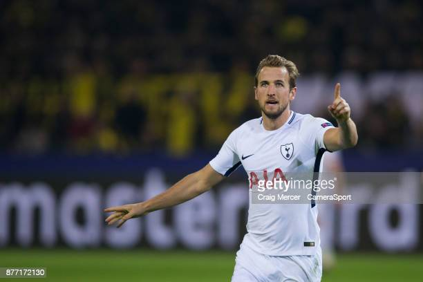 Tottenham Hotspur's Harry Kane celebrates scoring his side's equalising goal to make the score 11 during the UEFA Champions League group H match...