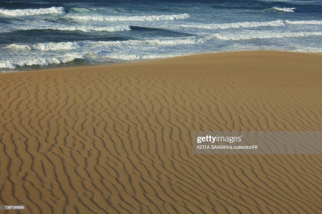 Tottori Sand Dunes Tottori Prefecture Honshu Japan Stock ...