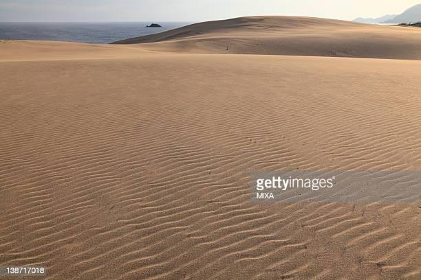 Tottori Sand Dunes, Tottori, Tottori, Japan