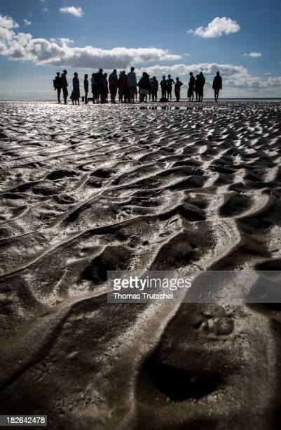 A tour group doing a walk across the mudflats of the island Fano
