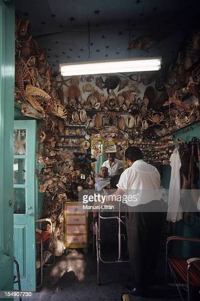 in a hair salon decorated with hundreds of shells a Cretan style is