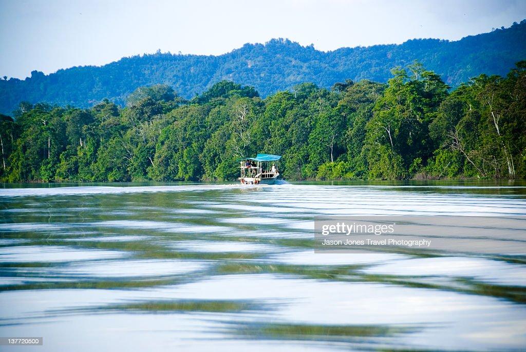 Tourist boat travels up Kinabatangan river