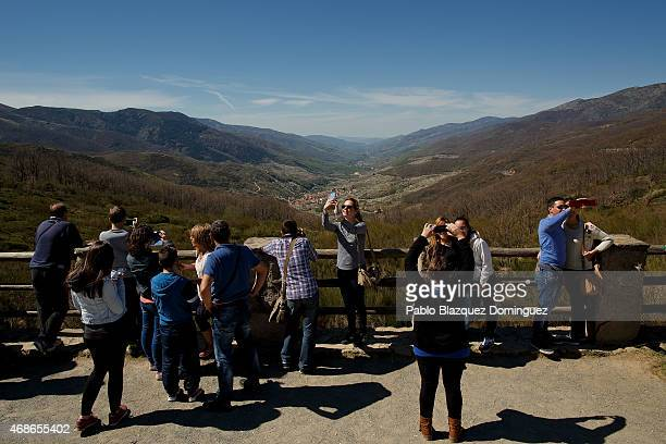 Tourist enjoy the view of the Jerte Valley from the high of the Tornavacas mountain pass during the cherry blooming season on April 5 2015 in the...