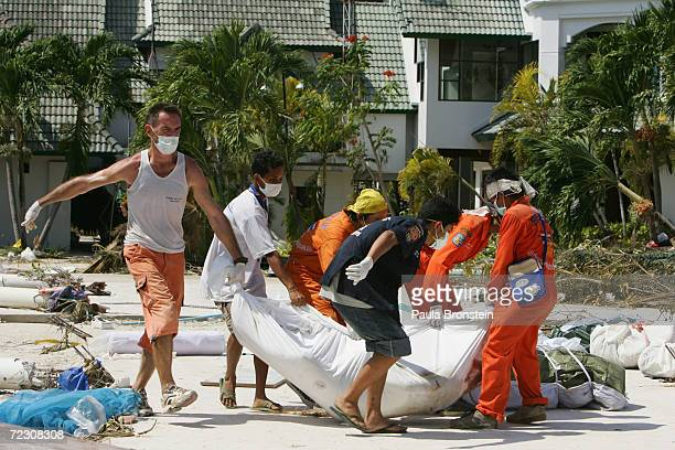 A tourist helps rescue workers carry corpses December 28 2004 in Phi Phi Village Ton Sai Bay Thailand Hundreds were killed on the island when an...