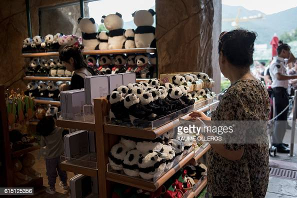 A tourist looks to buy stuffed panda toys at Hong Kong's Ocean Park on October 17 2016 The world's oldest ever giant panda in captivity died on...