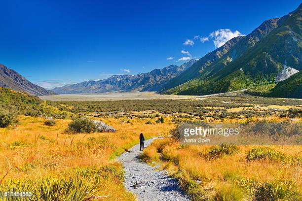 Tourist on hiking path in Mt Cook National Park NZ
