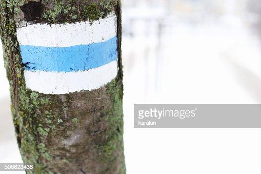 Tourist road sign on tree : Stock Photo