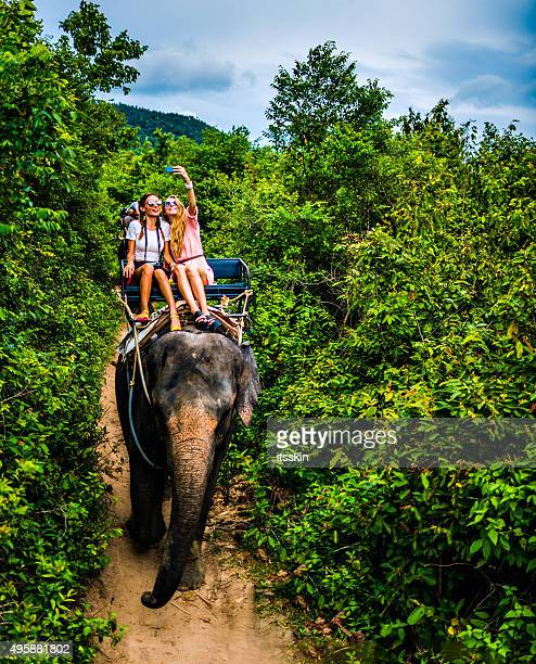 Touristen safari Elefanten-trekking