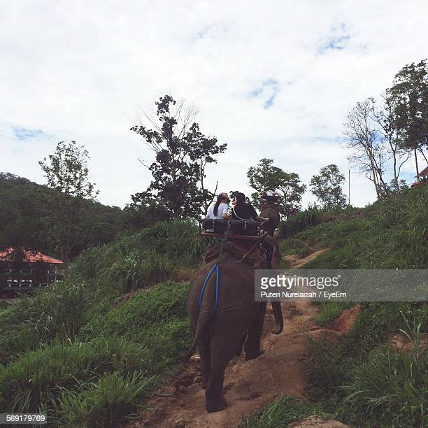 Tourist Sitting On Elephant On Hill Against Cloudy Sky