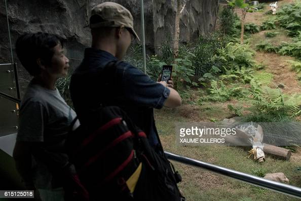 A tourist takes pictures of flowers left in memory of Giant Panda Jia Jia the world's oldest captive giant panda that died aged 38 on October 16 at...