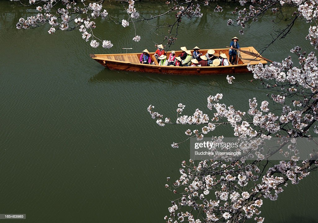 Tourist travel on a traditional boat to enjoy blooming cherry blossoms on the canal of Himeji castle on April 4, 2013 in Himeji, Japan. Himeji castle has been selected as one of the top places for cherry blossom viewing in Japan.