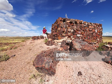buddhist single women in petrified forest natl pk Meet apache county single women online interested in meeting new people to date zoosk is used by millions of singles around the world to meet new people to date.
