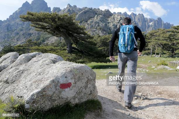 A tourist walks on the GR20 trek highlighted with white and red signs on April 4 2017 in the Bavella Mountains in Zonza on the French Mediterranean...
