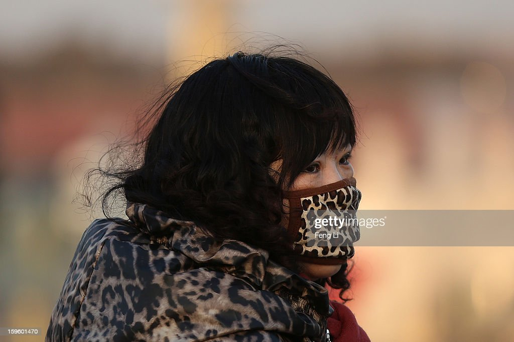 A tourist wearing the mask with Leopard pattern at the Tiananmen Square during slight pollution on January 17, 2013 in Beijing, China.