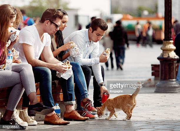 Tourists and friends having a snack in Sultanhamet district
