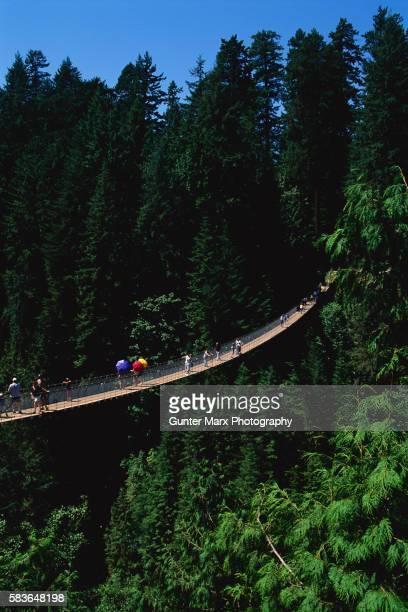 Tourists Crossing the Capilano Suspension Bridge