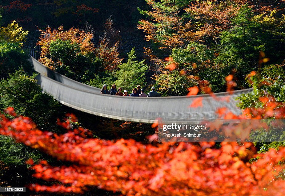 Tourists enjoy autumn colours at Gokanosho on November 8, 2013 in Yatsushiro, Kumamoto, Japan.
