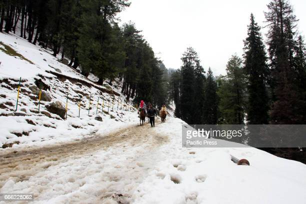PAHALGAM ANANTNAG JAMMU KASHMIR INDIA Tourists enjoying horse riding after a rare April snowfall in Jammu and Kashmir prompting the authorities to...