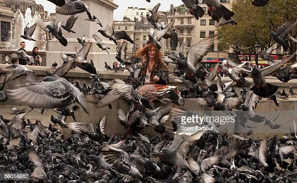Tourists Feed Pigeons Despite Bird Flu Fears