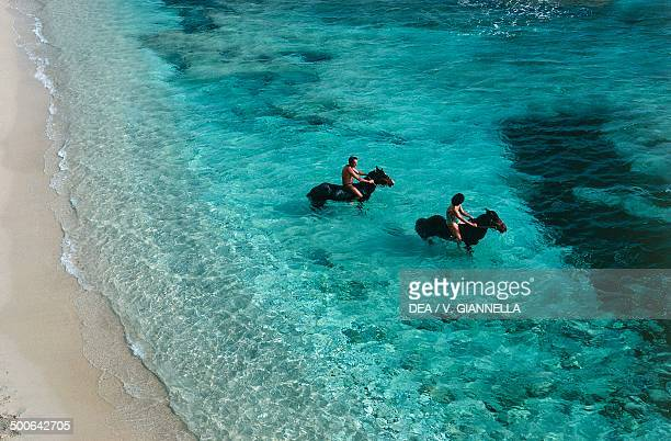 Tourists horseriding Paragan cove near Bonifacio Corsica France