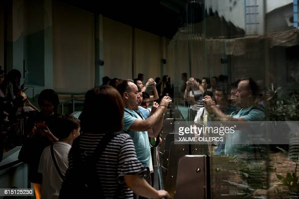 Tourists look into a giant panda enclosure at Hong Kong's Ocean Park in Hong Kong on October 17 2016 The world's oldest ever giant panda in captivity...