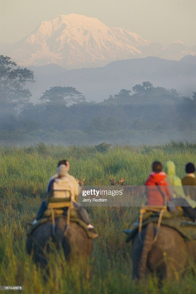Tourists looks on as the Himalayas are lit by the sun as it rises above the floodplains of the Brahmaputra River, as seen from inside Kaziranga National Park. Kaziranga National Park is the oldest national park in the northeast Indian state of Assam. It was created a century ago as a forest reserve by British Viceroy Lord Curzon at the behest of his wife, to protect the Greater One-Horned Rhinoceros. Today the park is home to many endangered animals, including the rhino, tigers, elephants, wild buffalo, swamp deer and numerous bird species. .