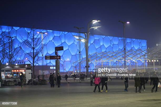 Tourists Near The Water Cube, Beijing.