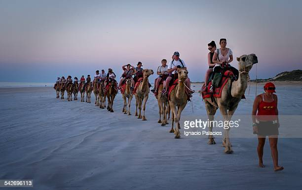 Tourists on camels in Cable beach