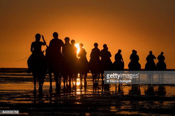 Tourists on horses at sunset. Wadden Sea, Germany.