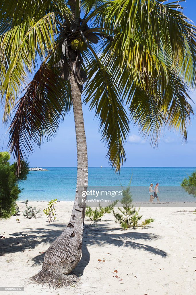 Tourists, people, a couple are walking at the white sandy beach with coconut palm trees of Fernandez Bay on June 15, 2012 in Fernandez Bay, Cat Island, The Bahamas.