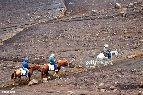 Tourists ride a horse in Summit of Puu Ulaula Maui Hawaii Summit of Puu Ulaula with departing several trekings foot or horseback to descend 900...