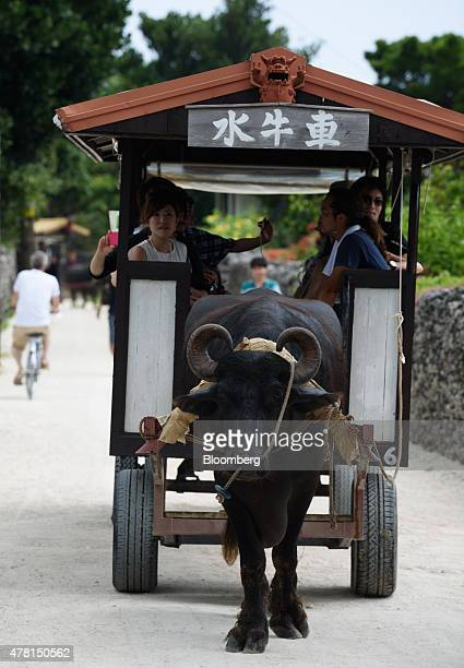 Tourists ride in a cart pulled by an ox in Taketomi Okinawa Prefecture Japan on Saturday June 20 2015 The Abe administration aims to cap increases in...