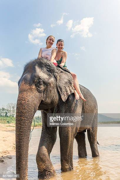 Tourists riding an elephant in the Mekong, Laos