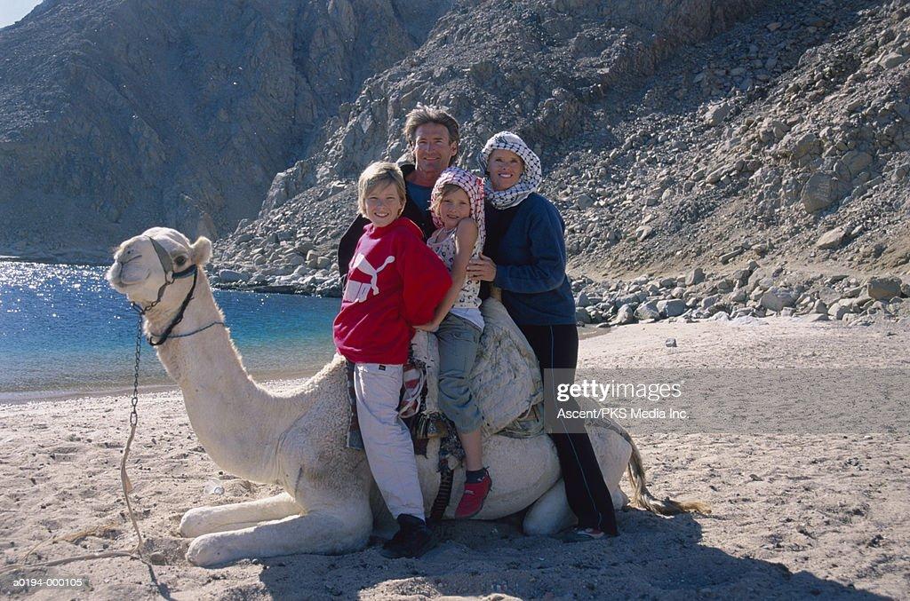 Tourists Riding Camel : Stock Photo