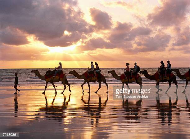 Tourists riding camels along Cable Beach in Western Australia