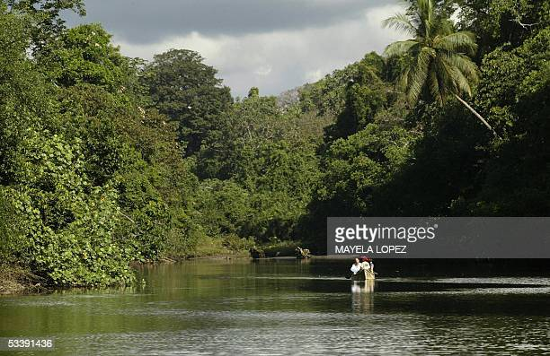Tourists sail along the Sirena river which goes through the Corcovado National Park some 360 km south of the capital San Jose in the Costa Rican...
