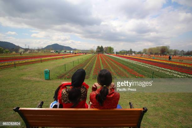 Tourists sitting on a bench in Asias largest Tulip Garden on Saturday in Srinagar Indian Controlled Kashmir on April 1 2017 Indira Gandhi Memorial...