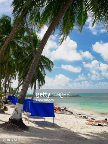 Tourists sunbathing on the beach, Spratt Bight Beach, San Andres, Providencia y Santa Catalina, San Andres y Providencia Department, Colombia : Foto de stock