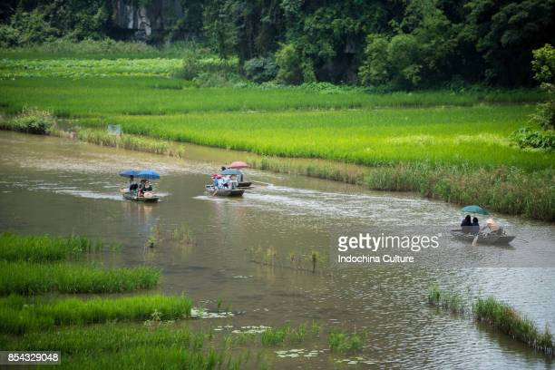 Tourists take a sightseeing on Tam Coc (three caves) boat trip on Ngo Dong River, (UNESCO World Herritage Area), near Ninh Binh, Vietnam