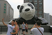 Tourists take pictures with the 15metertall panda sculpture on the Chengdu IFS building on July 25 2016 in Chengdu Sichuan Province of China The...