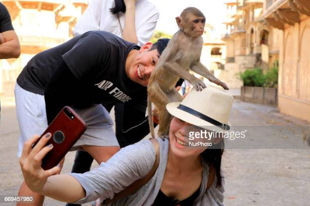Tourists take selfie with Macaque at Galta ji Temple in JaipurRajasthan India on April 17 2017Galta Ji temple is an ancient Hindu holy shrine...