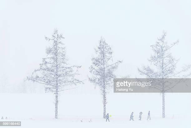 Tourists trekking in heavy snow, Hokkaido, Japan