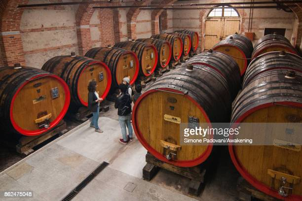 Tourists visit a winery of Marchesi di Barolo on October 17 2017 in the Barolo region Italy Because of the high summer temperatures Barolo's harvest...