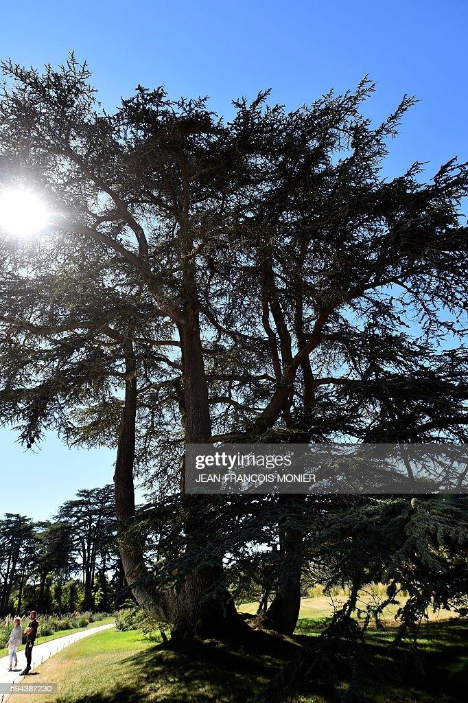 Tourists visit the garden of Chaumont Castle as the sun shines on August 23 in ChaumontsurLoire central France / AFP / JEANFRANCOIS MONIER