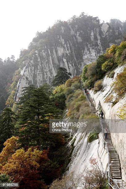 Tourists walk along a pathway on the Huashan Mountain on October 18 2009 in Huayin Shaanxi Province China Huashan located at an altitude of 21549...