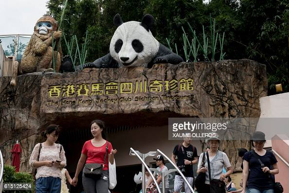 Tourists walk by the Sichuan Treasures entrance featuring a giant panda model at Hong Kong's Ocean Park in Hong Kong on October 17 2016 The world's...