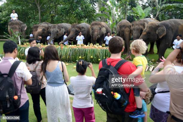 Tourists watch as Sumatran elephants eat during a celebration for World Elephant Day at the Bali Zoo in Gianyar regency on Bali island on August 12...